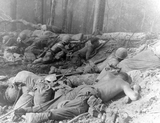 173d_Airborne_Brigade-_Vietnam_War-Hill_823